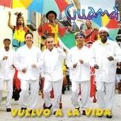 Vuelvo A La Vida (Coming Back To Life) Songs