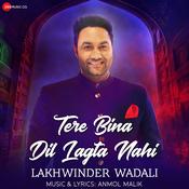 Tere Bina Dil Lagta Nahi Song