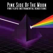 Pink Floyd Instrumental Renditions Songs
