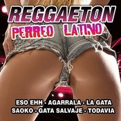 Reggaeton Perreo Latino Songs