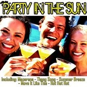 Party In The Sun Songs