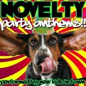 Novelty Party Anthems!! Songs