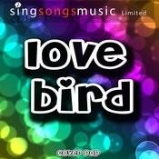 Lovebird - Single Songs