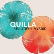 Beautiful Hybrid Songs