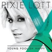 Young Foolish Happy Songs