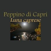Luna Caprese Songs