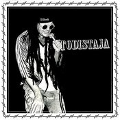 Todistaja Songs