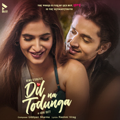 Dil Na Todunga Song