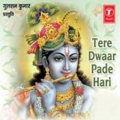 Tere Dwaar Padhe Hari Songs