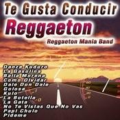 Te Gusta Conducir Reggaeton Songs