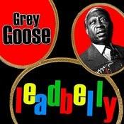 Grey Goose Songs