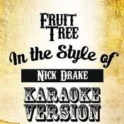Fruit Tree (In The Style Of Nick Drake) [Karaoke Version] - Single Songs