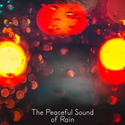 The Peaceful Sound Of Rain Songs