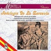El Barberillo De Lavapies Song