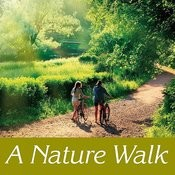 A Nature Walk Songs