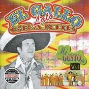 El Gallo Grande - MI Gusto Es, Vol. I Songs