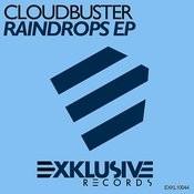 Raindrops (Original Mix) Song