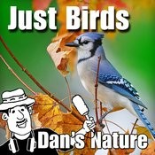 Just Birds (Nature Sounds) Songs