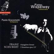 Schubert: Arpeggione Sonate, 3 Sonatinas Opus 137 Songs