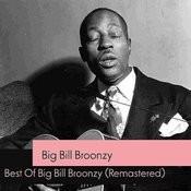 Best Of Big Bill Broonzy (Remastered) Songs
