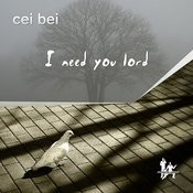 I Need You Lord 2011 Mixes Songs