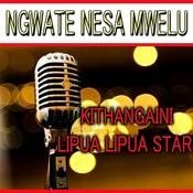 Ngwate Nesa Mwelu Songs