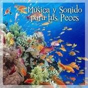 Música Y Sonidos Para Tus Peces Songs