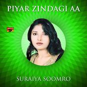 Piyar Zindagi Aa, Vol. 14 Songs