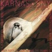 Sny (Dreams) Song