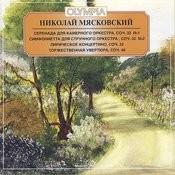 Sinfonietta For String Orchestra In B Minor, Op. 32 No 2: Iii. Presto Song