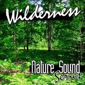 Wilderness (Nature Sounds) Songs