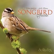 Forest Sanctuary Song