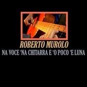 Na Voce 'na Chitarra E 'o Poco 'e Luna Song