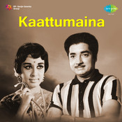 Kaattumaina Songs