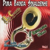 Puro Banda Sinaloense, Vol. 1 Songs