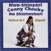 Bulldoza No 5 Shigwili Songs