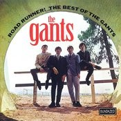 Road Runner! The Best Of The Gants Songs
