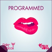 Programmed (To Be Perfect) Songs
