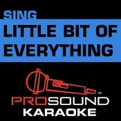 Little Bit Of Everything (In The Style Of Keith Urban) [Karaoke Version] Songs