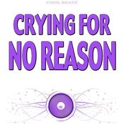 Crying For No Reason (Originally Performed By Katy B) [Karaoke Version] Songs