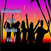 Disfrutando De La Musica, Vol. 7 Songs