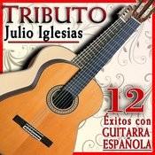 Tributo A Julio Iglesias, 12 Éxitos Con Guitarra Española Songs