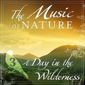 The Music Of Nature - A Day In The Wilderness, Vol. 3 Songs