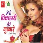 Meri Pichkari Tere Gubbare Songs