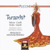 Puccini - Turandot Songs