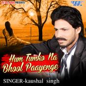 Hum Tumko Na Bhool Paayenge Song