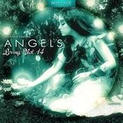 Meritage Healing: Angels (Loving), Vol. 14 Songs