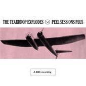 Peel Sessions Plus Songs