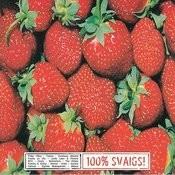 100% Svaigs, Vol.1 Songs
