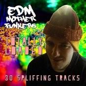 Totally Loaded - 30 Spliffing Tracks Songs